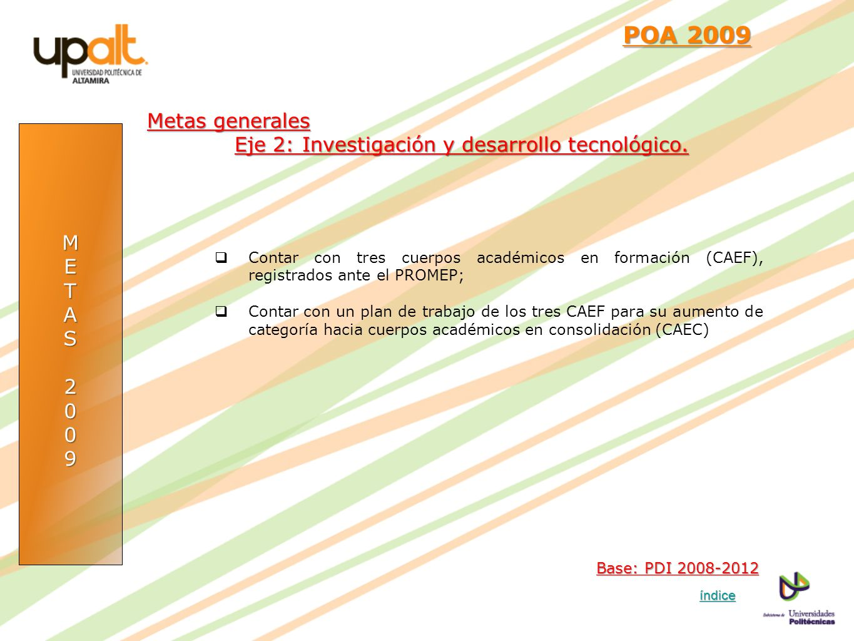 POA 2009 Metas generales. Eje 2: Investigación y desarrollo tecnológico. M. E. T. A. S. 2. 9.