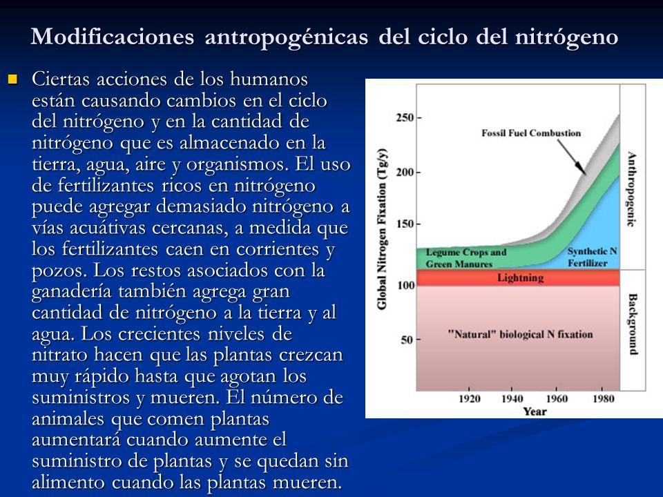 Modificaciones antropogénicas del ciclo del nitrógeno
