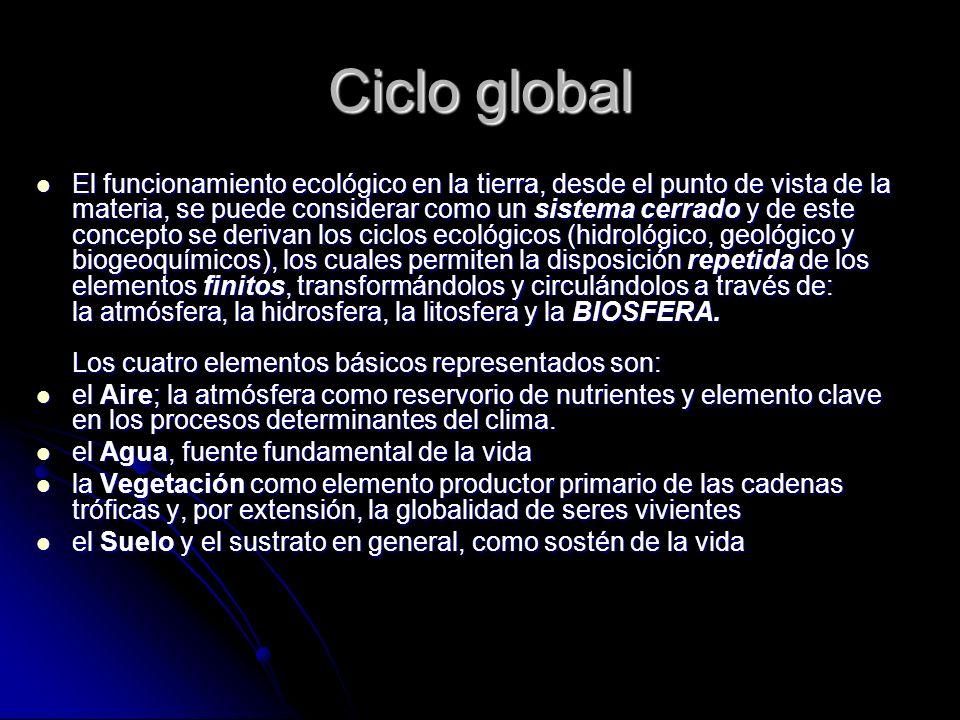 Ciclo global