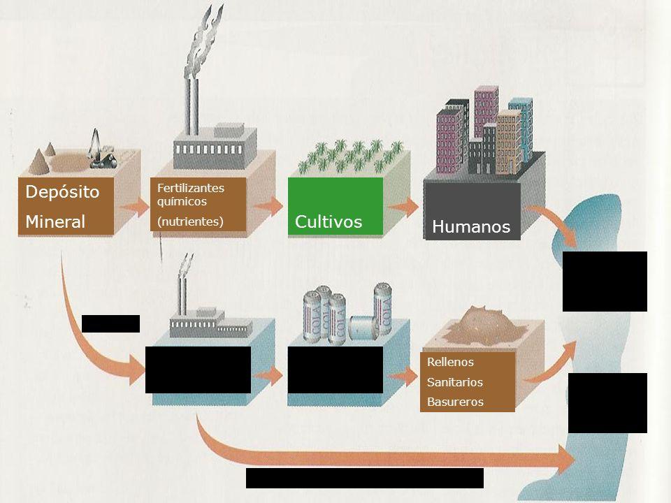 Descarga de efluentes sucios Contaminación de vías pluviales