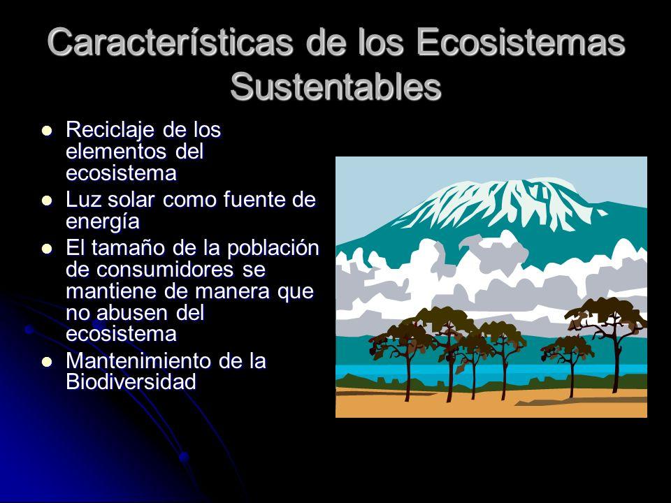 Características de los Ecosistemas Sustentables