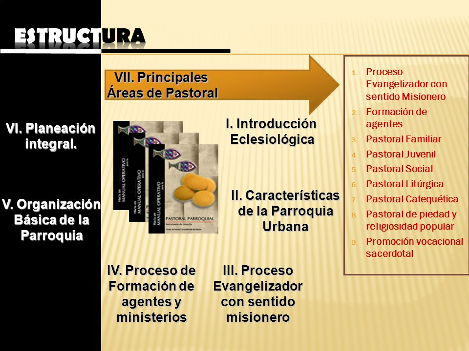 Estructura VII. Principales Áreas de Pastoral I. Introducción