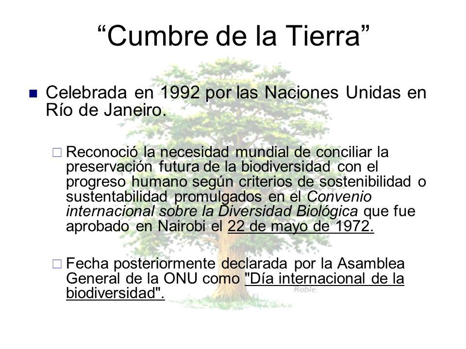 Cumbre de la Tierra Celebrada en 1992 por las Naciones Unidas en Río de Janeiro.