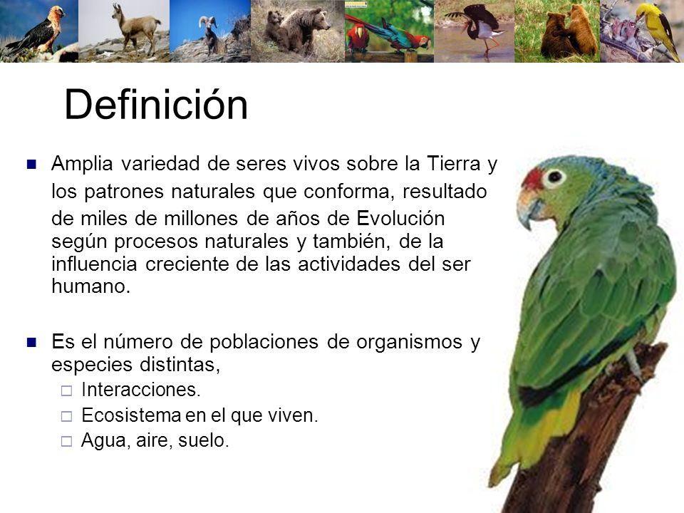 Definición Amplia variedad de seres vivos sobre la Tierra y