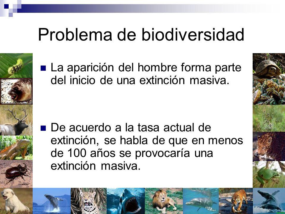 Problema de biodiversidad