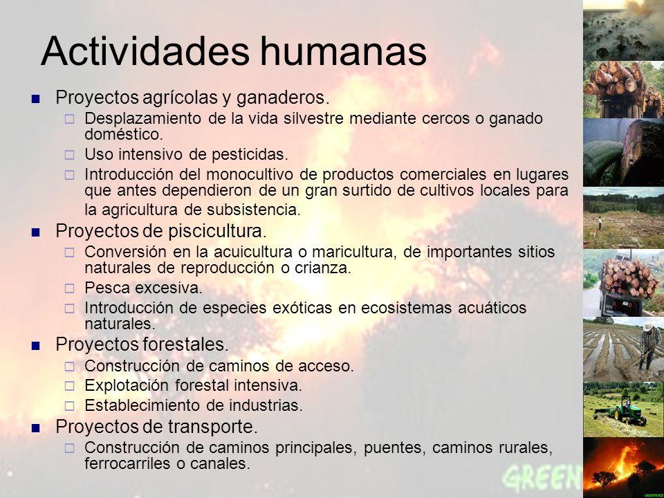 Actividades humanas Proyectos agrícolas y ganaderos.