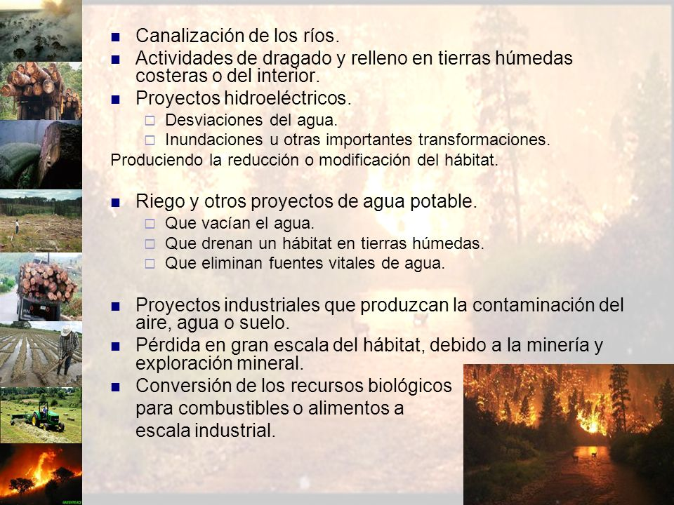 Canalización de los ríos.