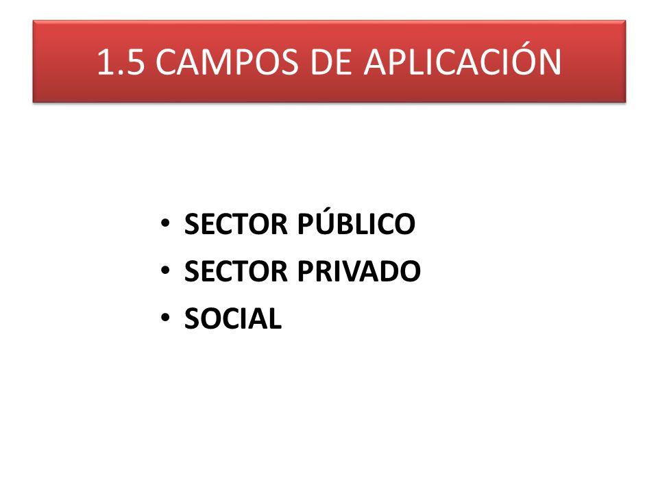 1.5 CAMPOS DE APLICACIÓN SECTOR PÚBLICO SECTOR PRIVADO SOCIAL
