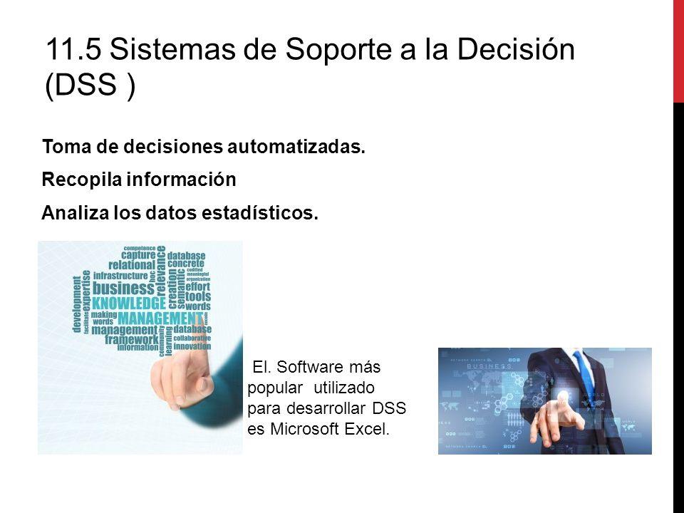 11.5 Sistemas de Soporte a la Decisión (DSS )