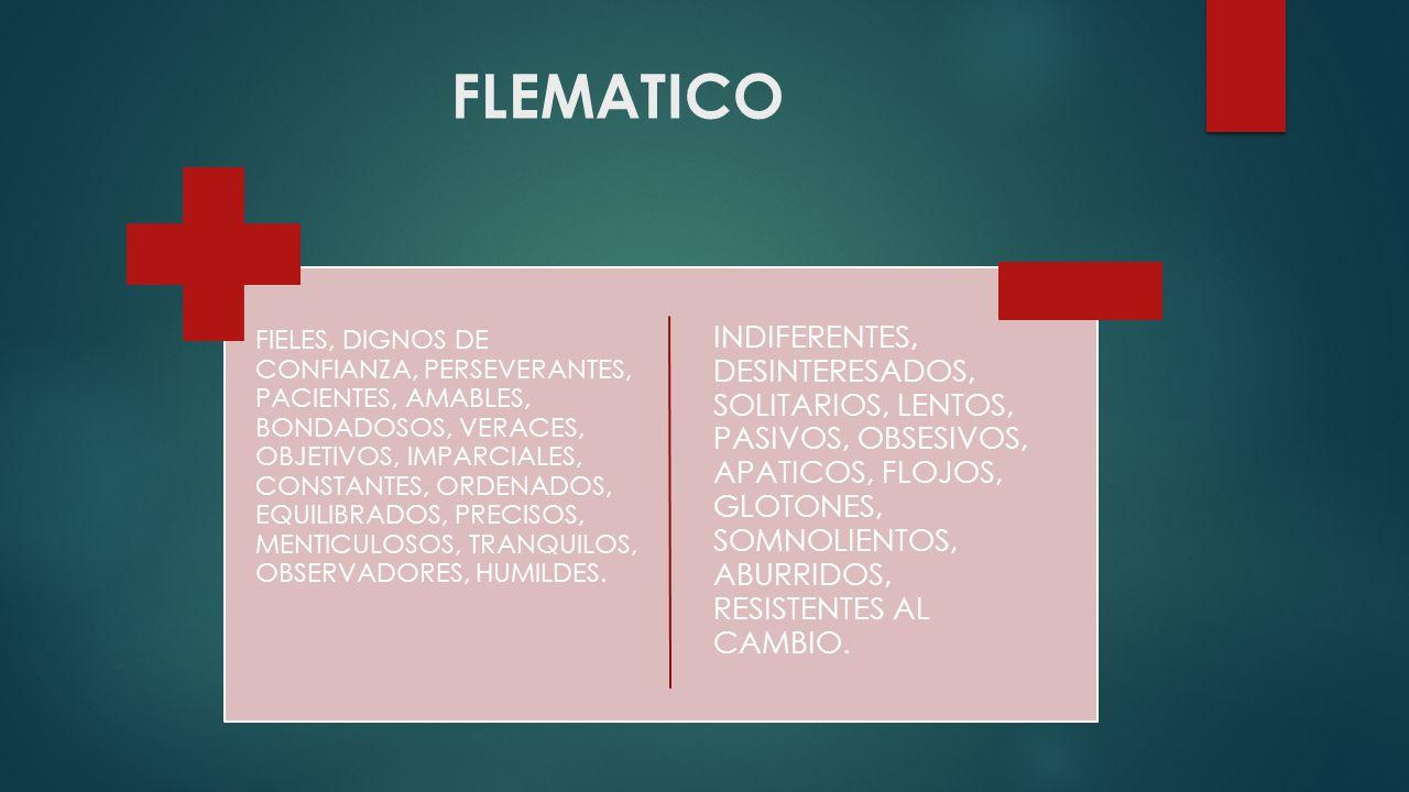 FLEMATICO