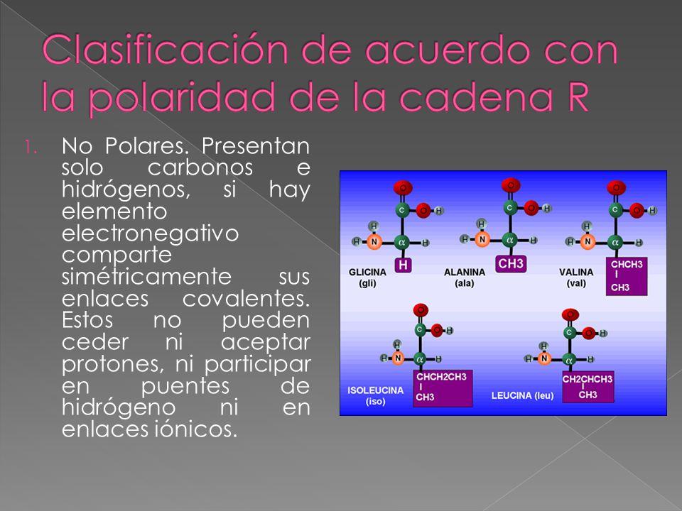 Clasificación de acuerdo con la polaridad de la cadena R