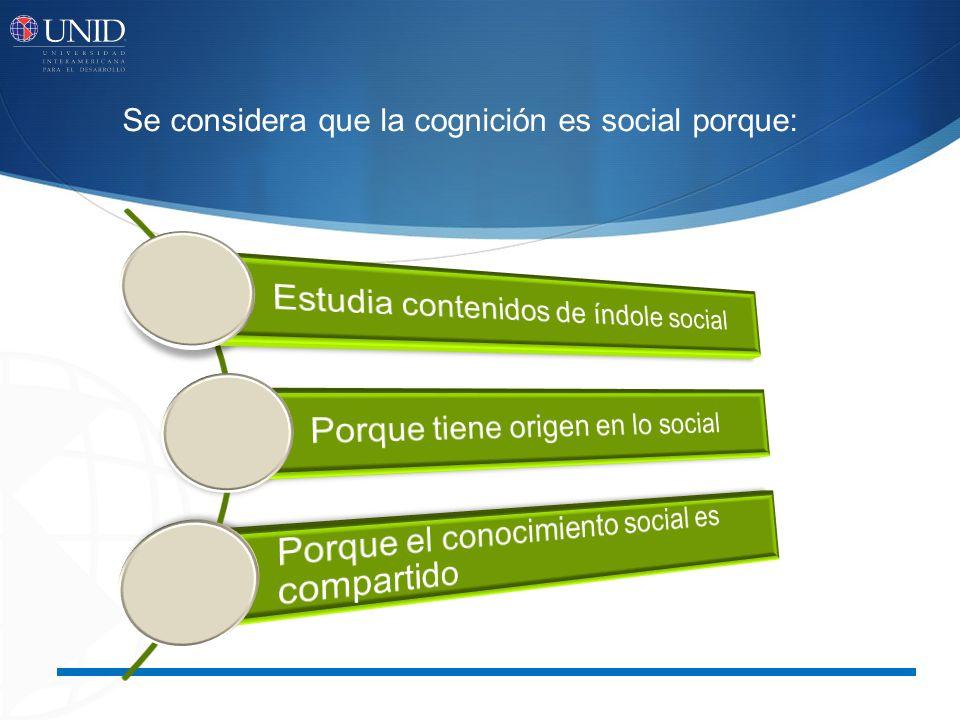 Estudia contenidos de índole social