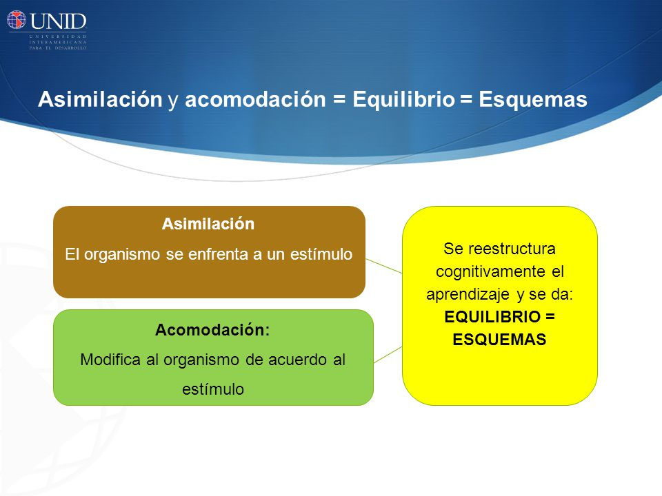 Asimilación y acomodación = Equilibrio = Esquemas