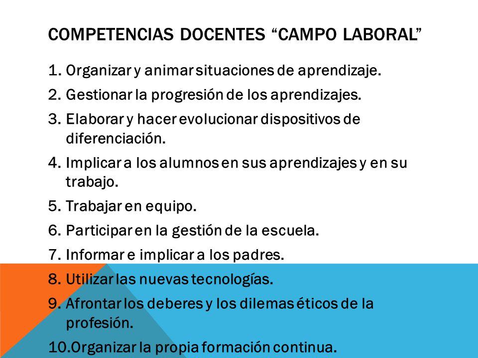 Competencias docentes campo laboral