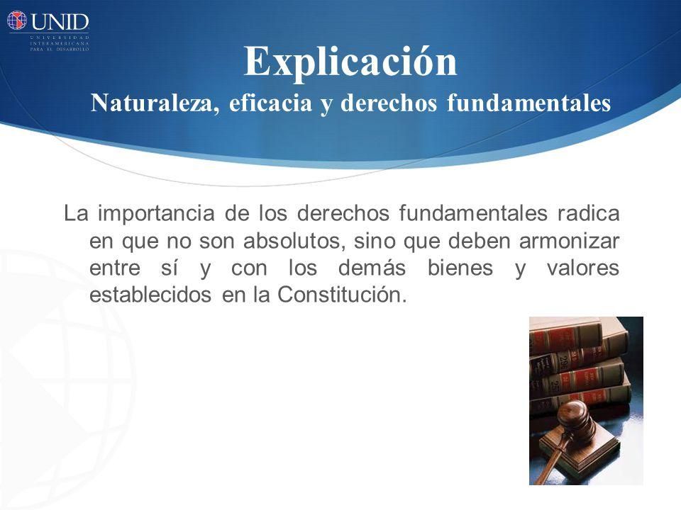 Explicación Naturaleza, eficacia y derechos fundamentales