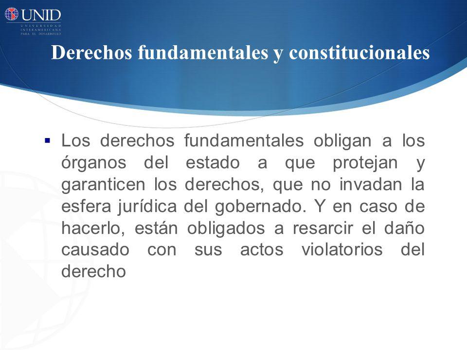 Derechos fundamentales y constitucionales