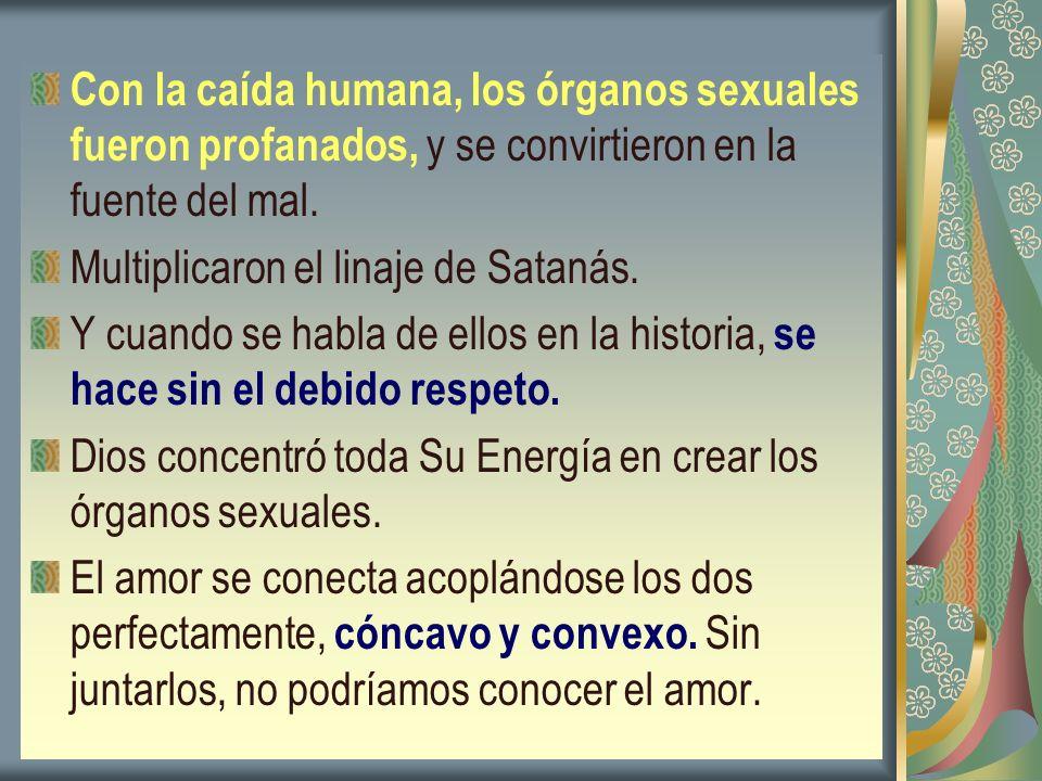 Con la caída humana, los órganos sexuales fueron profanados, y se convirtieron en la fuente del mal.