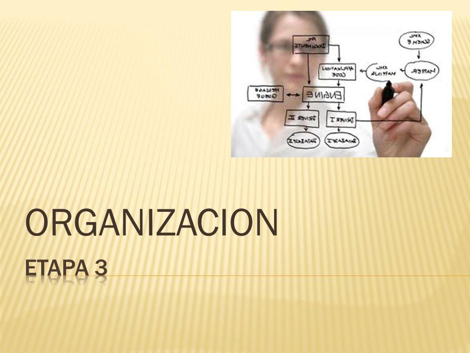 ORGANIZACION ETAPA 3