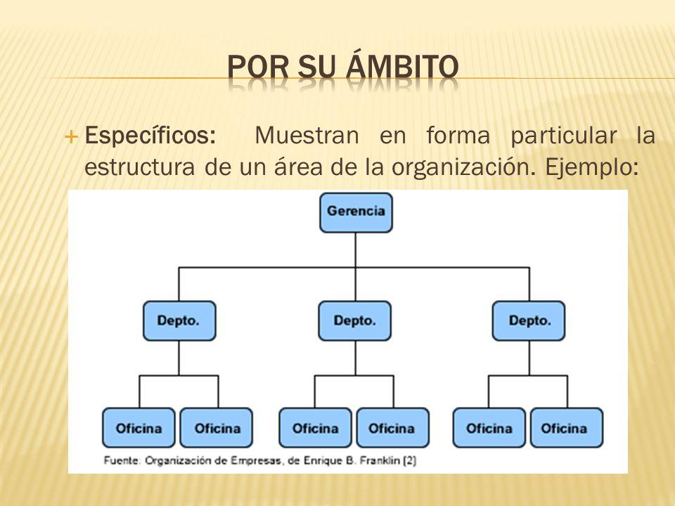 Por su ámbito Específicos: Muestran en forma particular la estructura de un área de la organización.