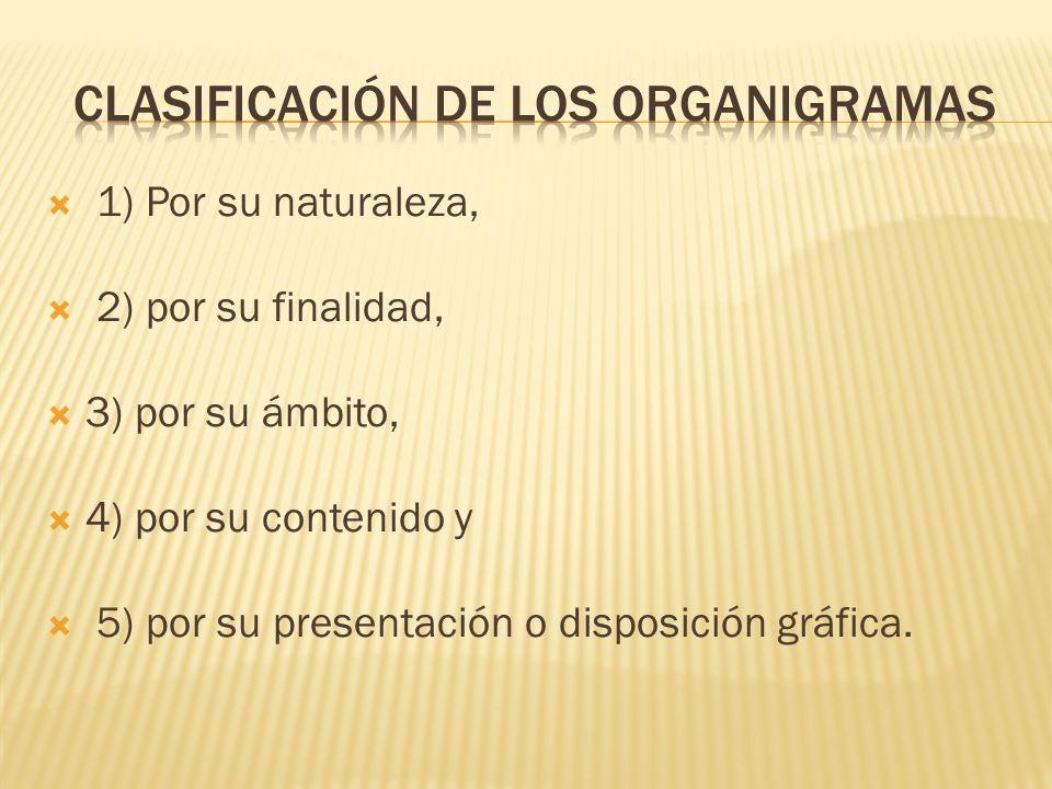 Clasificación de los organigramas