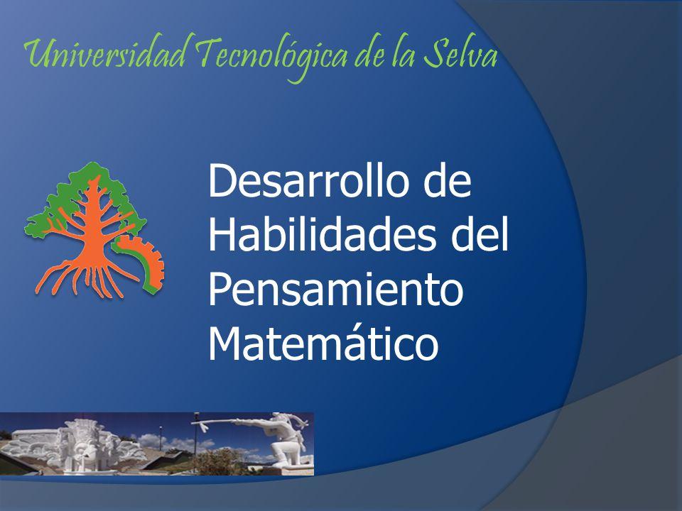 Desarrollo de Habilidades del Pensamiento Matemático