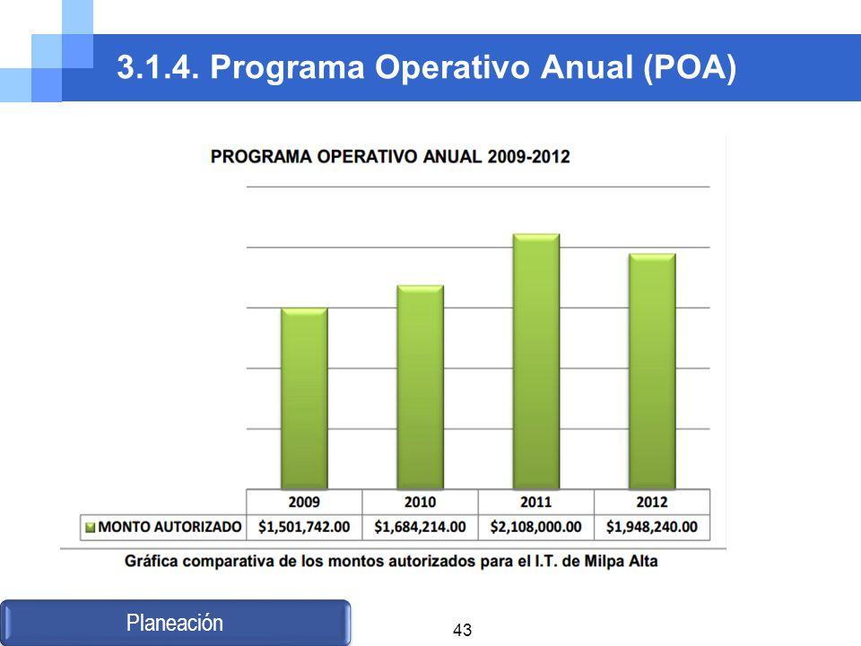 3.1.4. Programa Operativo Anual (POA)