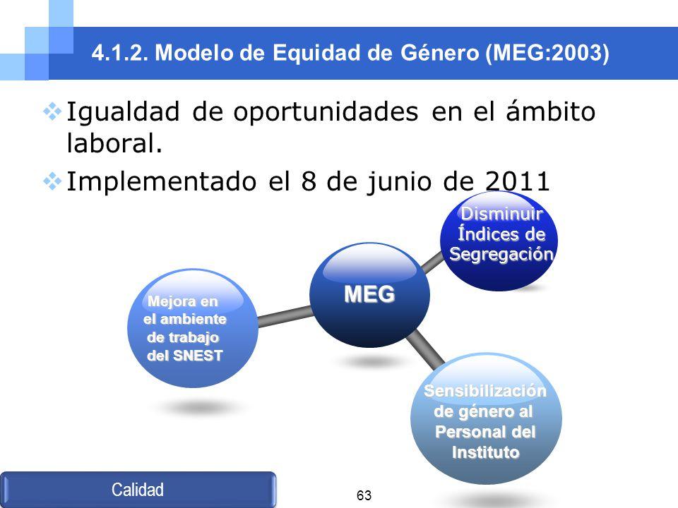 4.1.2. Modelo de Equidad de Género (MEG:2003)