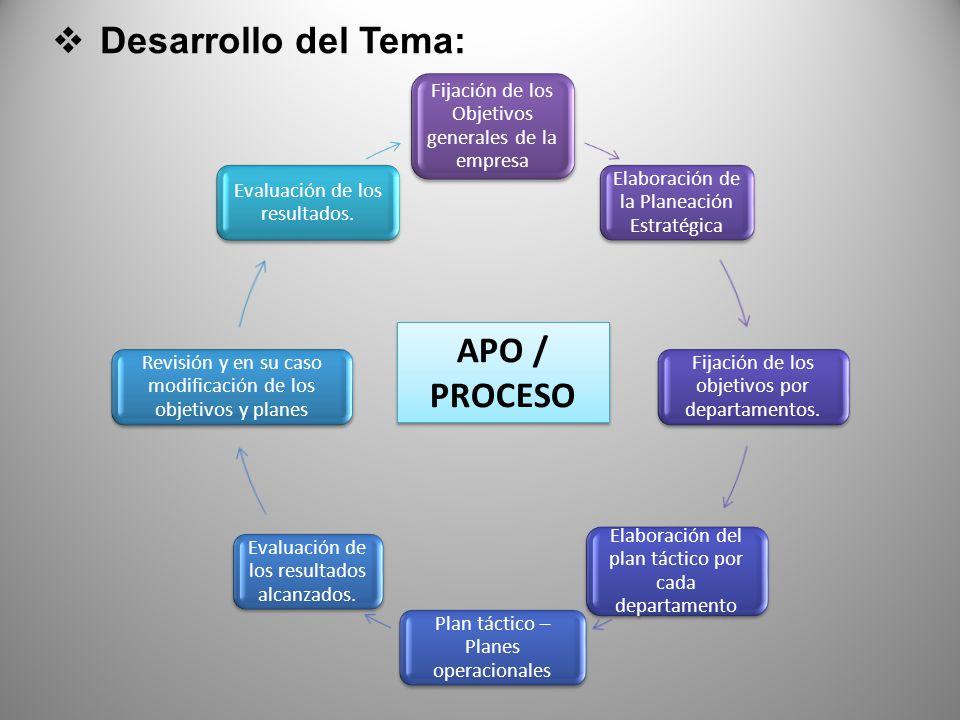 Desarrollo del Tema: APO / PROCESO