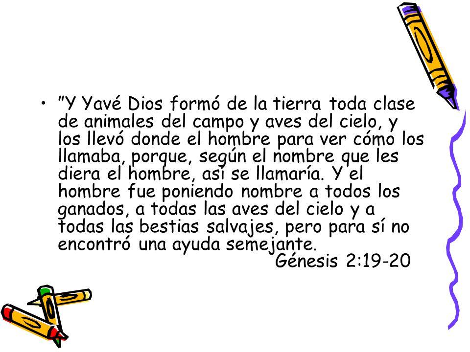 Y Yavé Dios formó de la tierra toda clase de animales del campo y aves del cielo, y los llevó donde el hombre para ver cómo los llamaba, porque, según el nombre que les diera el hombre, así se llamaría.