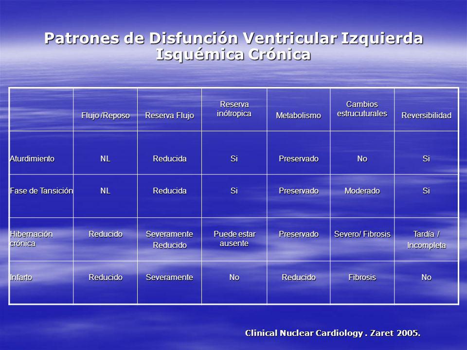 Patrones de Disfunción Ventricular Izquierda Isquémica Crónica