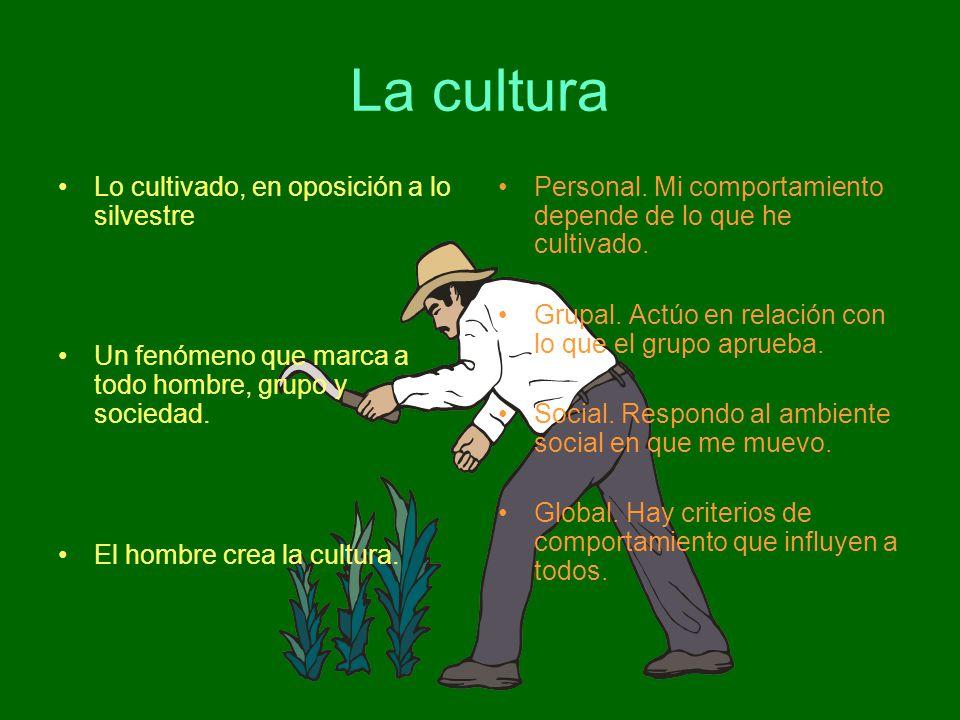 La cultura Lo cultivado, en oposición a lo silvestre