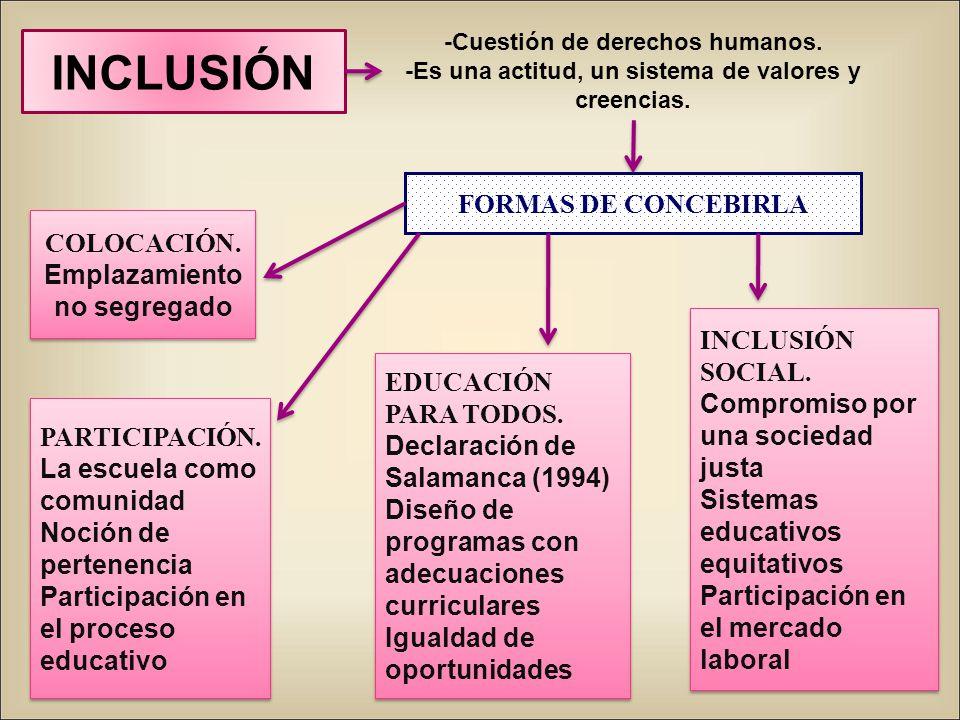 INCLUSIÓN FORMAS DE CONCEBIRLA COLOCACIÓN. Emplazamiento no segregado