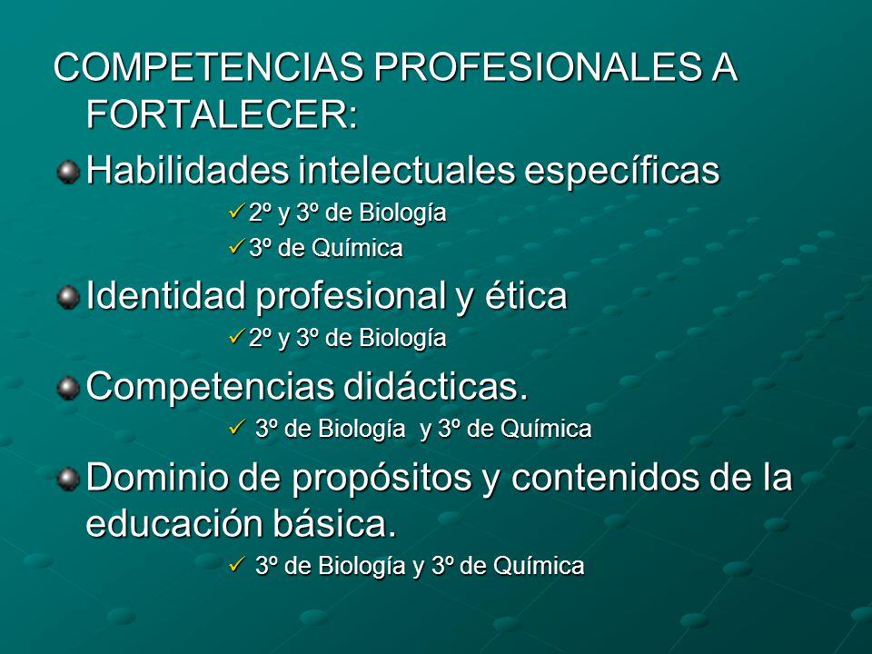COMPETENCIAS PROFESIONALES A FORTALECER: