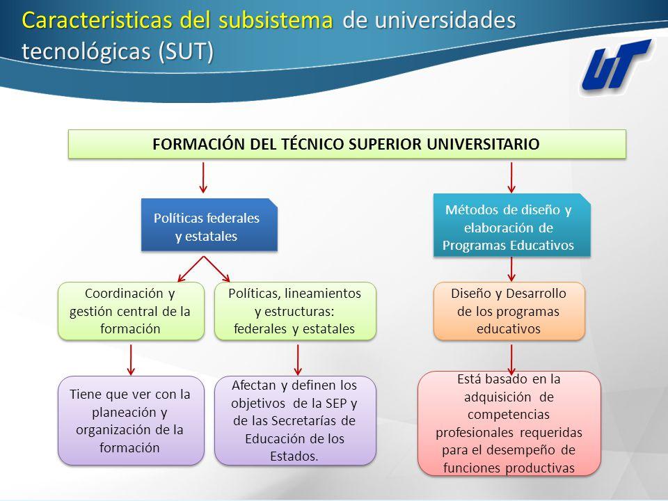 FORMACIÓN DEL TÉCNICO SUPERIOR UNIVERSITARIO