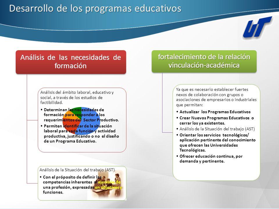 Desarrollo de los programas educativos