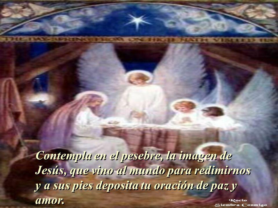 Contempla en el pesebre, la imagen de Jesús, que vino al mundo para redimirnos y a sus pies deposita tu oración de paz y amor.