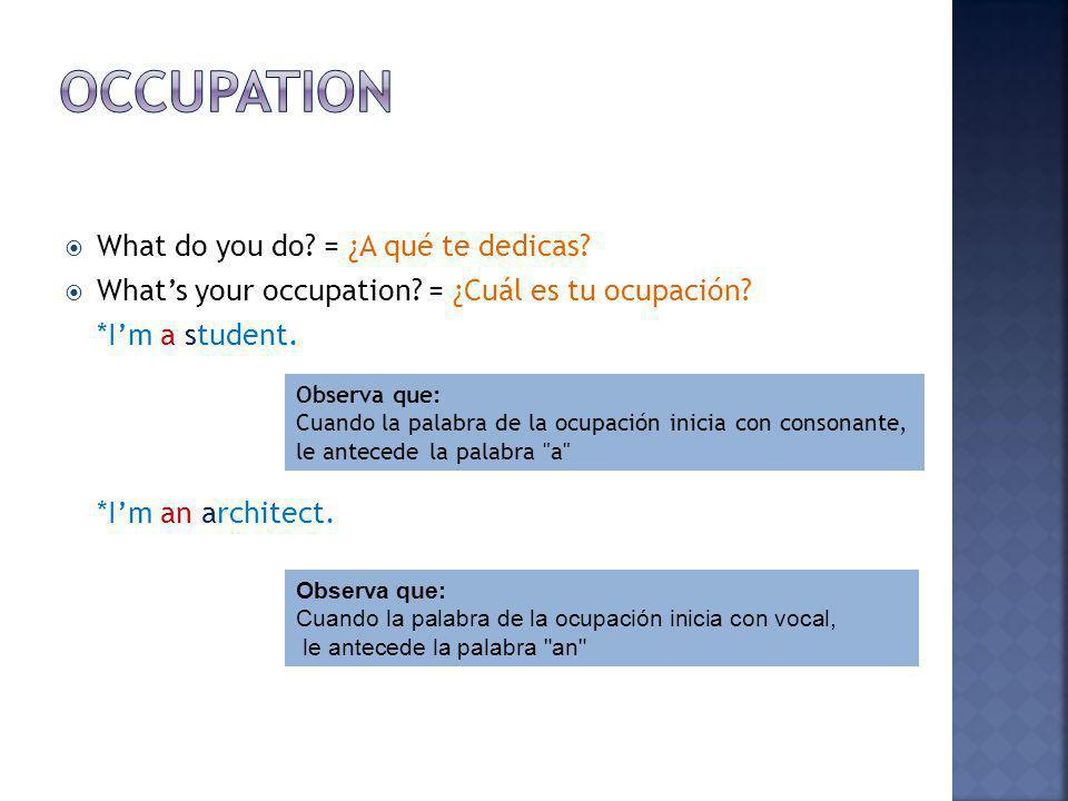 Occupation What do you do = ¿A qué te dedicas