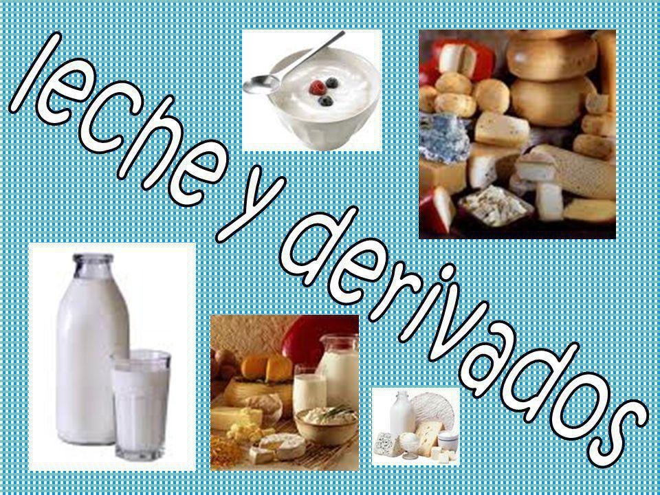 leche y derivados