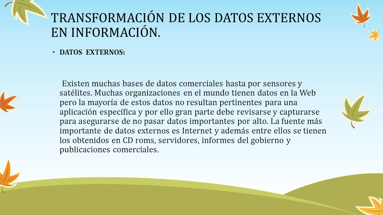 TRANSFORMACIÓN DE LOS DATOS EXTERNOS EN INFORMACIÓN.