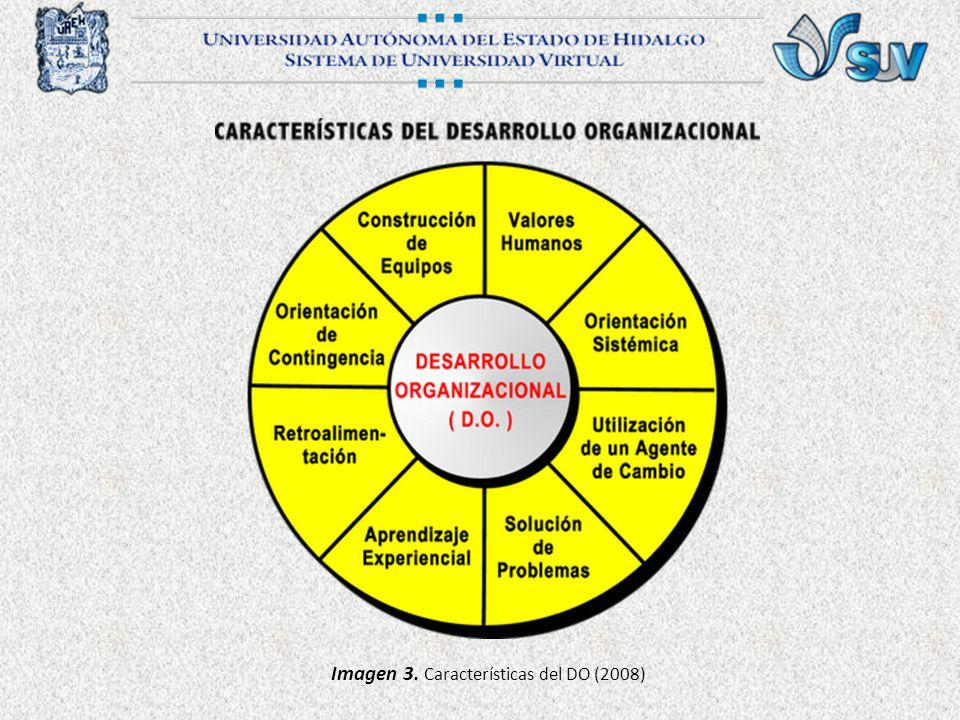 Imagen 3. Características del DO (2008)