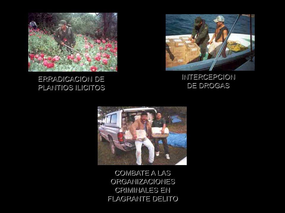 INTERCEPCION DE DROGAS. ERRADICACION DE. PLANTIOS ILICITOS. COMBATE A LAS. ORGANIZACIONES. CRIMINALES EN.