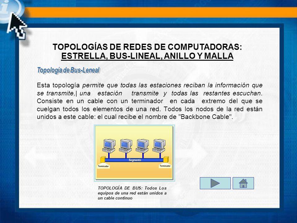 Topología de Bus-Leneal