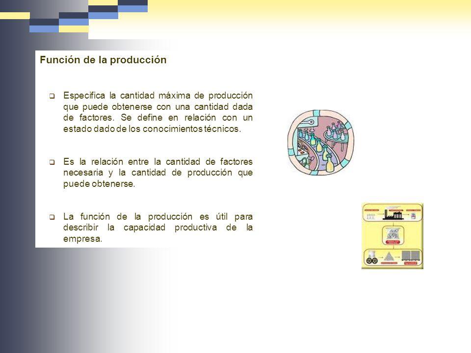 Función de la producción