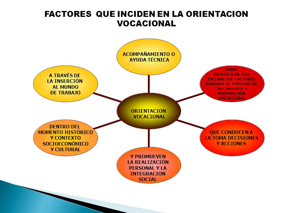 FACTORES QUE INCIDEN EN LA ORIENTACION VOCACIONAL