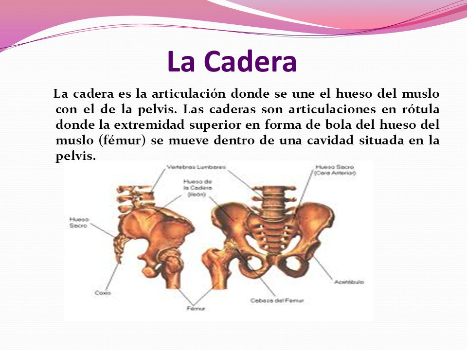 La Cadera