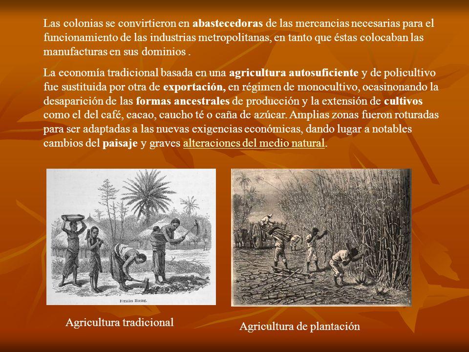 Las colonias se convirtieron en abastecedoras de las mercancias necesarias para el funcionamiento de las industrias metropolitanas, en tanto que éstas colocaban las manufacturas en sus dominios .