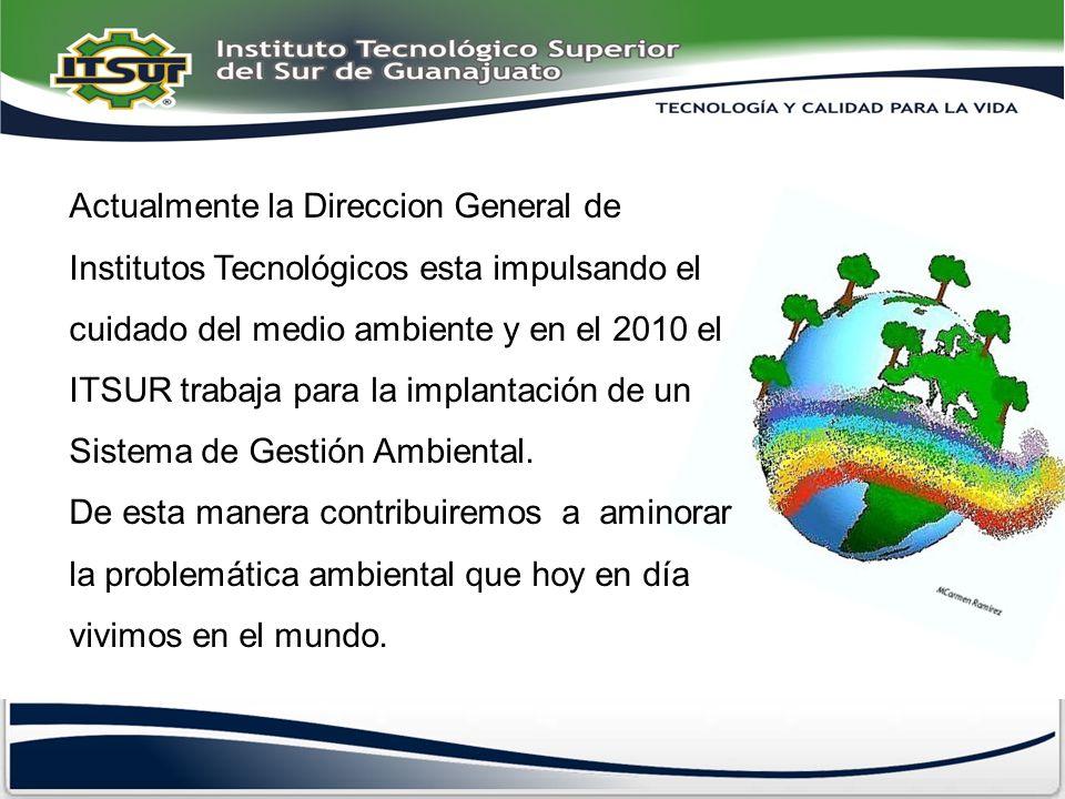 Actualmente la Direccion General de Institutos Tecnológicos esta impulsando el cuidado del medio ambiente y en el 2010 el ITSUR trabaja para la implantación de un Sistema de Gestión Ambiental.
