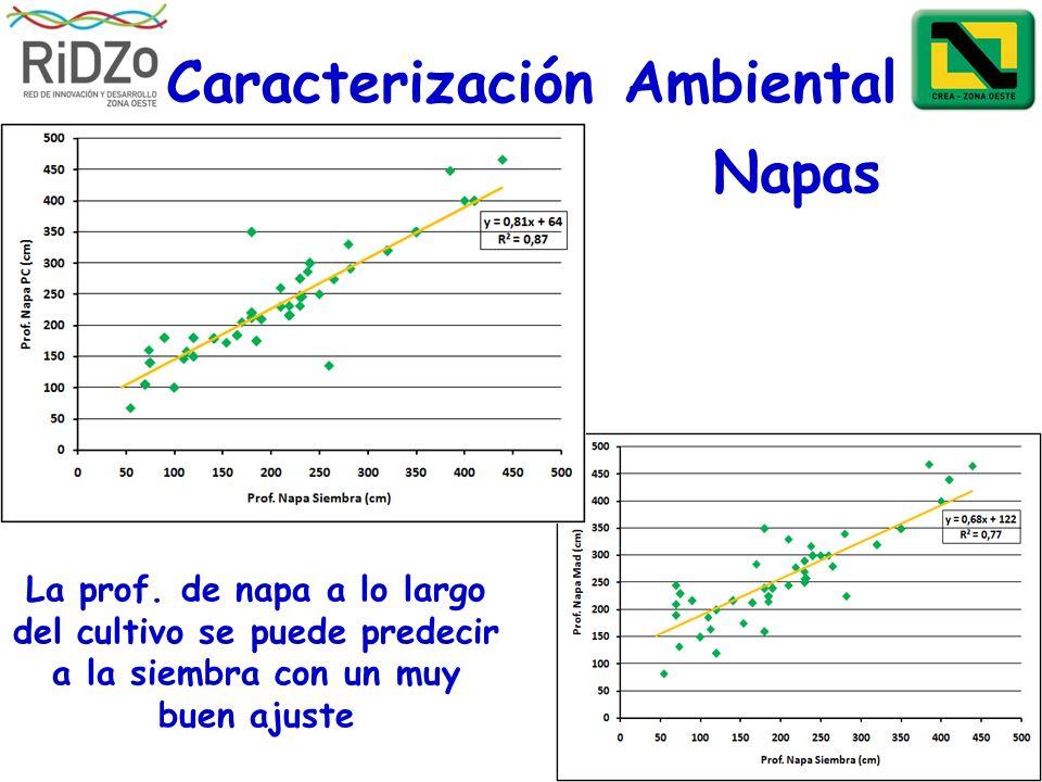 Caracterización Ambiental