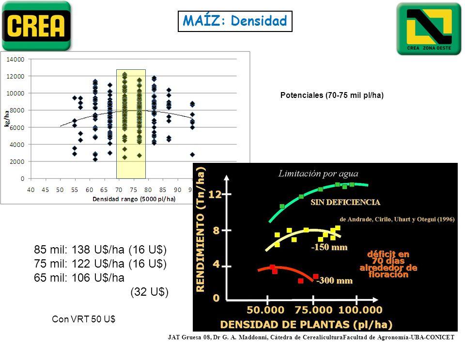 Potenciales (70-75 mil pl/ha)