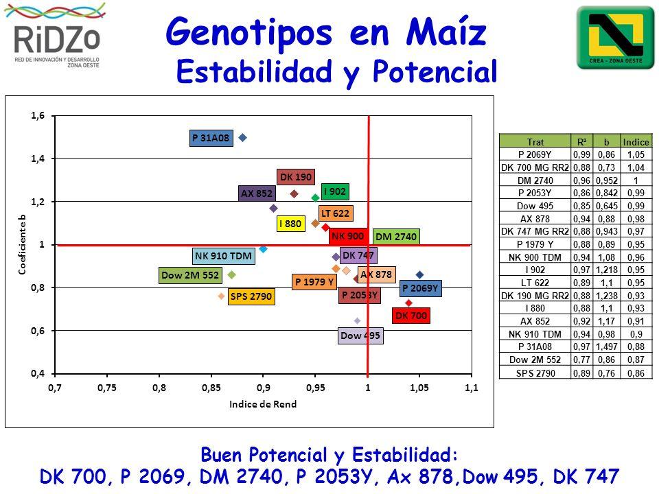 Estabilidad y Potencial Buen Potencial y Estabilidad: